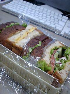 100522_sandwich.jpg